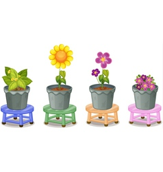 Various potted plants vector image