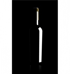 wine bottle vector illustratio vector image