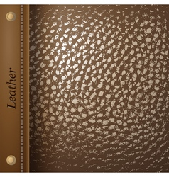 leather vector image vector image
