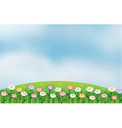 A view hill with flowers vector