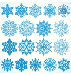 Beauty snowflakes vector
