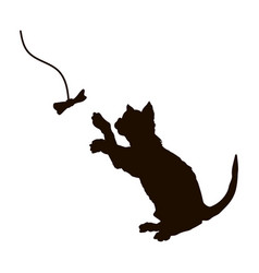 black silhouette playing cat isolated kitty vector image