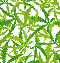 Marijuana Cannabis seamless pattern background of vector