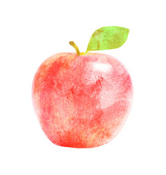 Watercolor red apple fruit with leaf on white vector
