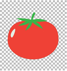 tomato on transparent tomato sign flat style vector image vector image