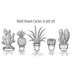 Beauty cacti Hand drawn cactus in pot set vector