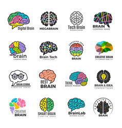 brain logotypes business concept colored smart vector image