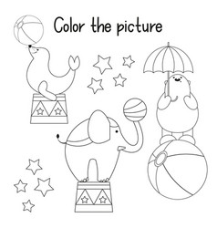 color picture vector image