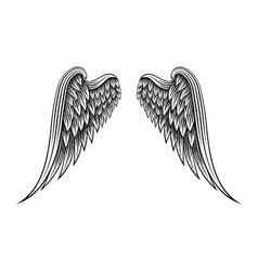 hand drawn angel wings vector image