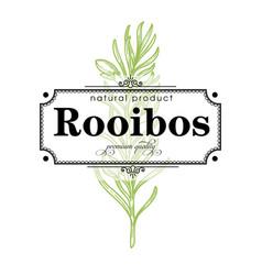 rooibos premium quality product retro label vector image