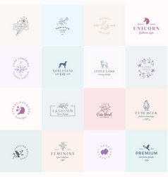 Sixteen abstract feminine signs or logo vector