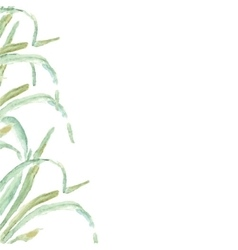Watercolor green grass vector