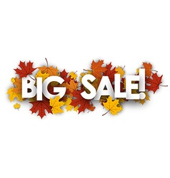 Big sale banner with maple leaves vector image