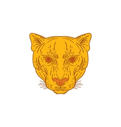 Cougar Mountain Lion Head Mono Line vector image