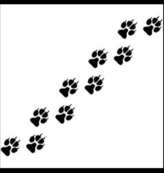 Footprints of paws of an animal vector