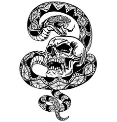 snake coiled round skull black and white vector image