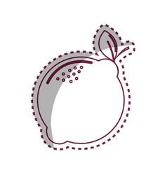 sticker silhouette lemon fruit icon stock vector image