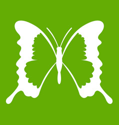 Swallowtail butterfly icon green vector