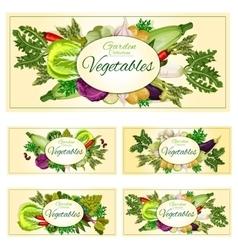 Vegetables greens veggies vegetarian banners set vector