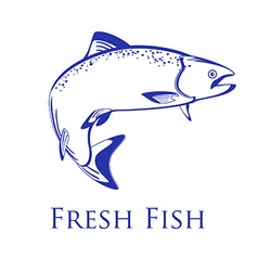 Salmon with text fresh fish vector image