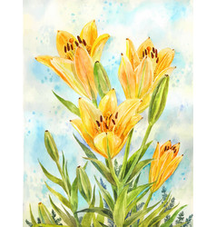 bouquet of yellow lilies watercolor suitable for vector image