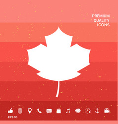 Maple leaf icon vector