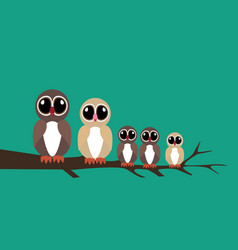 Owls family on the branch vector