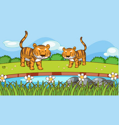 Scene with two tigers in park vector