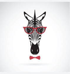 Zebra wearing sunglasses on white background vector