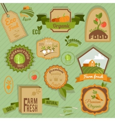 Eco labels vegetables vector image vector image