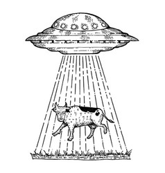 Ufo kidnaps the cow engraving style vector