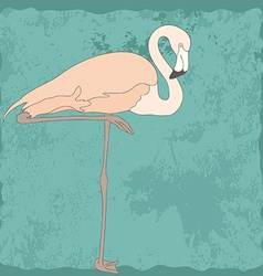 FlamingoStand8 vector image