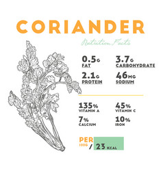 nutrition facts of raw coriander vector image