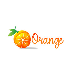 organic logo orange logo leafs on hand logo vector image