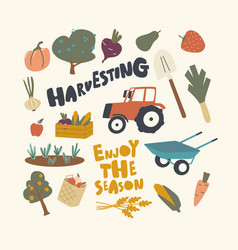 set icons harvesting theme ripe fruit vector image