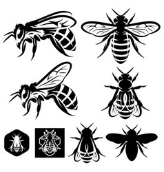 Set monochrome templates with bees of vector