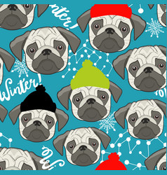 winter seamless pattern with cute pugs faces vector image