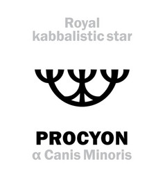 Astrology procyon the royal behenian kabbalistic vector