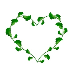 Evergreen Leaves in A Heart Shape Wreath vector