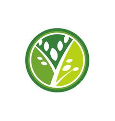 Nature beauty business logo vector