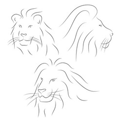 Set of black line lions heads on white background vector