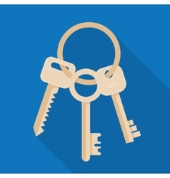 Bunch of three keys vector image