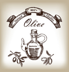 olive oil in jar with tree branch hand drawn in vector image
