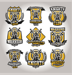Set of colorful logos emblems of a knight on a vector