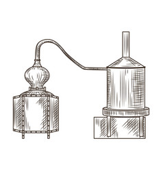 Alembic pisco engraved style isolated on white vector