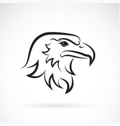 an eagle head design on white background bird vector image