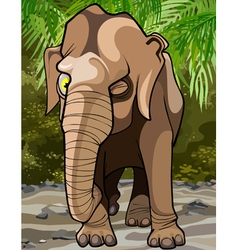 Cartoon winking big elephant in the jungle vector