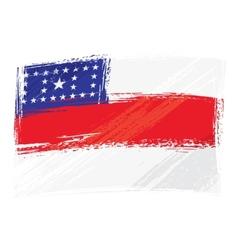 Grunge Amazonas flag vector image