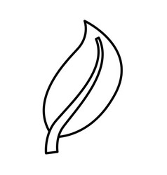 leaf plant isolated icon vector image