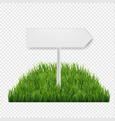 Square of green grass field transparent background vector